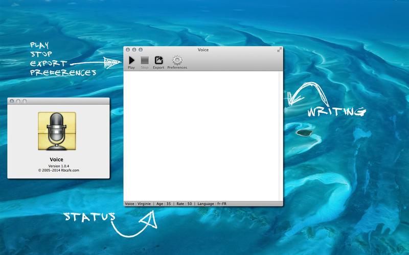 Voice main interface